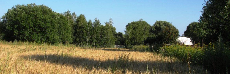 Деревня Горохово Тульской области, Заокский район.