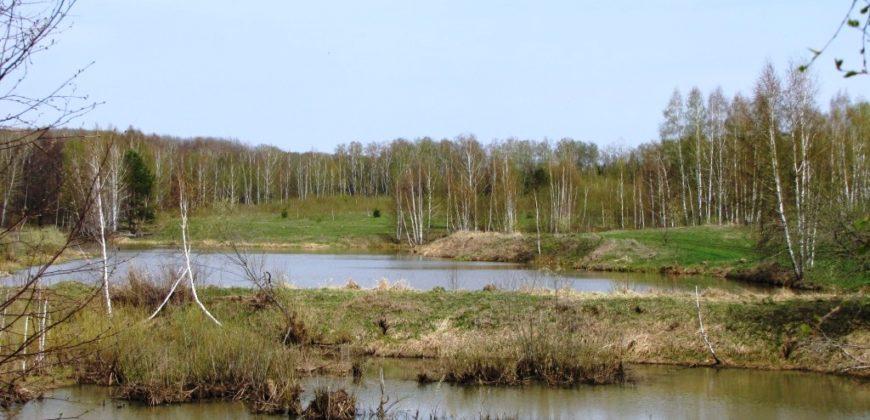 Участок 50 соток в СНТ Сонинское, Заокский район.
