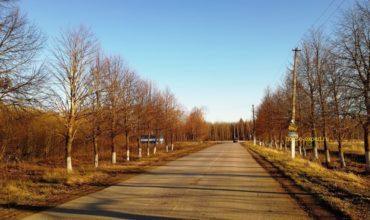 Купить участок ЛПХ или ИЖС в посёлке Бутиково, область Тульская, район Заокский.
