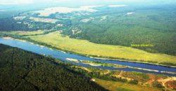 Участки под дачу, лесные и крайние, река Ока, электричество и подъезд