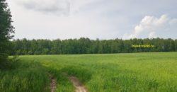Участок сельхоз назначения 85 Га, 500 метров от асфальтированного подъезда.